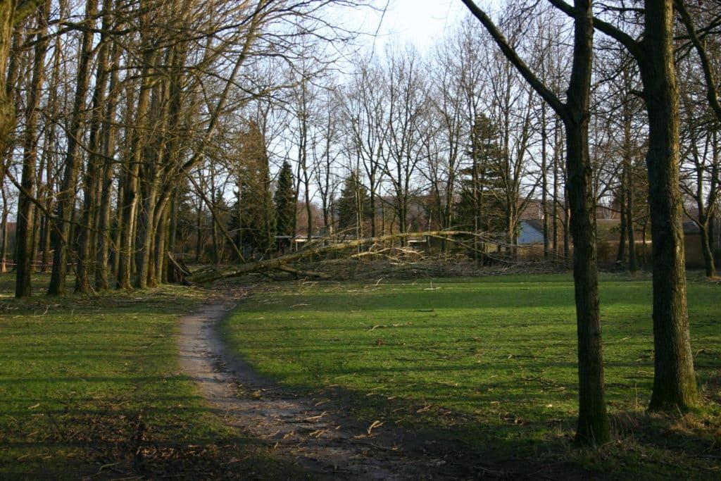 Rotunden efter orkanen i januar 2005 rotunden efter orkanen d. 5 januar 2005 2 2