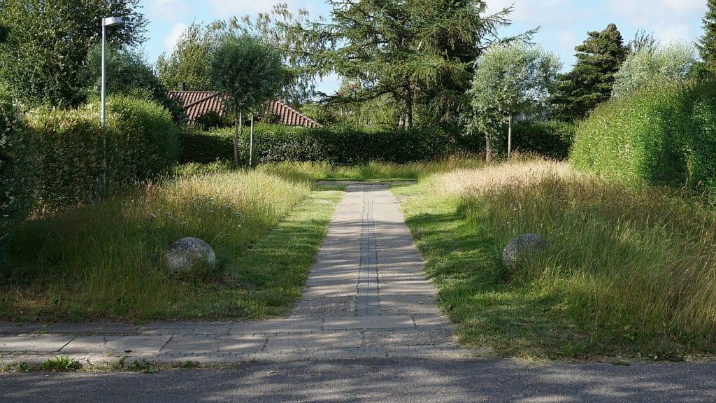 Driftsplan for holbergkvarteret 2016/17 biodiversitet 5